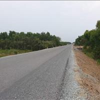 Cần bán đất mặt tiền tỉnh lộ 823, xã Bình Hòa Nam, Đức Huệ, Long An, giá đầu tư