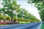 Dự án Gem Sky World - Khu đô thị 92 Ha Long Thành - ảnh tổng quan - 39