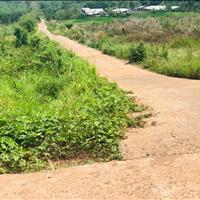 Bán đất mặt tiền Bình Phước giá 4** triệu/1000m2
