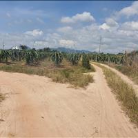 Chính chủ bán 1.1 hecta đất Tân Hải - TX LaGi rẻ nhất