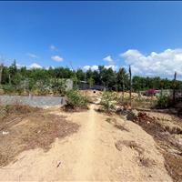 Bán đất thổ cư Tân An, thị xã La Gi giá gốc cách Thống Nhất 100m