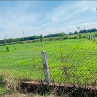Đất trồng cây lâu năm.1250m2 giá 1ty8.Ngay khu dân cư,Có Sổ Riêng