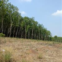 Nền Nha Bích - Quy hoạch 1/500 Huyện Chơn Thành, Bình Phước