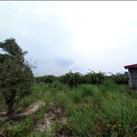 Bán 1 mẫu đất Hẻm Lý Thái Tổ - Tân Tiến - TX LaGi giá mềm