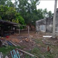 Cần bán mặt tiền Quốc Lộ 55 thôn Mũi Đá xã Tân Phước Thị xã La Gi giá cả phải chăng