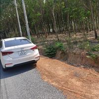 Bán đất chính chủ ngay thị trấn Lộc Ninh - Bình Phước giá 280 triệu