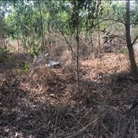 Bán đất mặt tiền Lê Văn Duyệt xã Tân Phước Thị Xã La Gi giá thương lượng