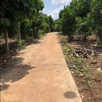 Bán 1.2ha đất Bảo Quang, TP Long Khánh chưa qua đầu tư