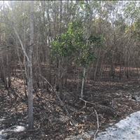 Bán đất thôn Mũi Đá Xã Tân Phước Thị xã LaGi Bình Thuận  giá thương lượng