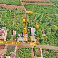Bán đất đường Nguyễn Trung Trực view hồ 1019, giá rẻ, cập nhật mới nhất tháng 4/2021