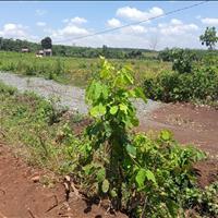 Bán đất sào Bình Long, Bình Phước 1000m2 giá 360tr