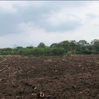 Bán 1.8ha đất Suối Chồn Bàu Cối - Long Khánh giá rẻ nhất