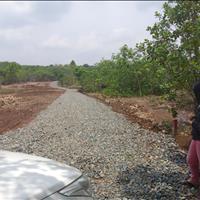 Bán đất An Phú Bình Long Bình Phước chính chủ 1000m2 giá chỉ 295tr