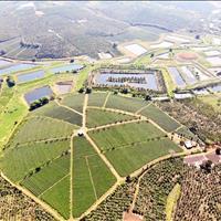Tại sao phải mua đất Đà Lạt với giá gấp 20 lần trong khi TT Bảo Lộc chỉ 390 triệu/100m2 full thổ cư