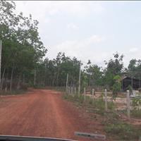 Bán gấp lô đất 1000m2 sát ĐT744 gần trường tiểu học Định Thành Dầu Tiếng Bình Dương