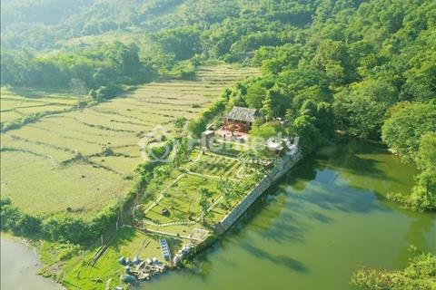 Bán đất Hòa Trúc Hòa Thạch diện tích 814m2 ô tô vào đất giá chỉ 1,4 tỷ, liên hệ