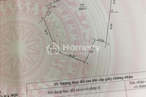 Cần bán gấp 5945m2 đất tại Thắng Trí, Xã Minh Trí, Sóc Sơn, Hà Nội, giá đầu tư