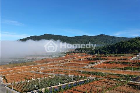 Bán gấp lô biệt thự view đồi thông giá rẻ nhất dự án 12.5 triệu/m2,  khu đô thị Vạn Xuân Langbiang