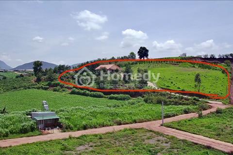 Bán đất trang trại 9.000 m2 , Sổ riêng NN,  Đạ Ròn, Đơn Dương