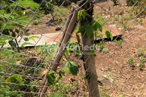 Bán 3.2 sào đất thổ cư Bảo Quang, TP Long Khánh giá mềm