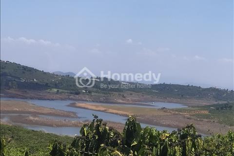 Cần bán đất trang trại_ nghỉ dưỡng resort ở Lâm Đồng.