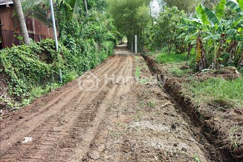 Cần bán miếng đất vườn 1000m2 trồng xoài gần thị trấn Dầu Giây