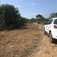 Bán đất Phú Lý, Vĩnh Cửu, Đồng Nai mặt tiền ngang 100m, dài 48m