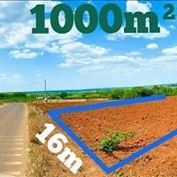 1000m mặt tiền đường lớn Phước Bình, giá đầu tư
