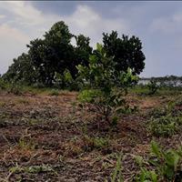 Bán lô đất Bình Phước 1000m2 sổ sẵn có 175 triệu