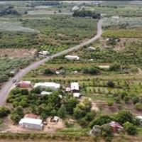 Còn một lô đất vườn duy nhất Bình Châu diện tích 3.5ha giá chỉ 1tr1