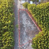 Cần bán lô đất tại xã Bình Châu diện tích 1386m2