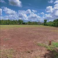 Bán đất Bình Long Bình Phước giá rẻ 2 mặt tiền giá chỉ 440tr/1000m2