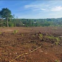 Bán 1.7 ha đất Hàng Gòn, TP Long Khánh rẻ nhất