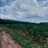 Bán đất quận Trảng Bom bán đất an viễn huyện Trảng Bom tỉnh Đồng Nai Đồng Nai