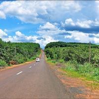 Bán đất quận Đồng Phú - Bình Phước giá 400 triệu