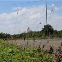 Bán đất nền dự án quận Xuyên Mộc - Bà Rịa Vũng Tàu giá 2.90 Tỷ