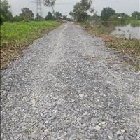 Hot hot bán đất diện tích 518m2 - 1300m2 giá F0 Tân Thạnh Tây, Huyện Củ Chi