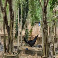 Bán đất sào xã Phước Bình, giá rẻ, quy hoạch đất ở ( ONT )
