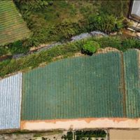 Bán đất phường 10 thành phố  Đà Lạt sổ hồng riêng 508 m2