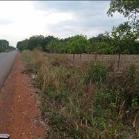Bán đất tại KCN 6.300ha Đồng Phú - Bình Phước giá 200 Triệu
