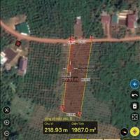 Đất mặt tiền 20m tại Bảo Lâm, Lâm Đồng, liên hệ xem đất