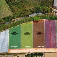 Bán đất Phường 10, giá 5 triệu/ m2, đường Mimosa