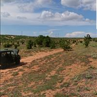 Bán 5143m2 đất vườn bắc bình giá ưu đãi chỉ 360tr gần đất dự án Rạng Đông Lh 0938.- 677-909 Hiền