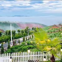 Bán Đất Biệt Thự Nghĩ Dưỡng View Đồi Săn Mây Tại Trung Tâm Thành Phố Bảo Lộc Giá 2,9tr/m2