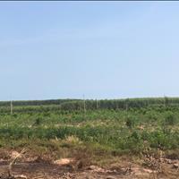 Bán 8 ha đất Tân Tiến - TX LaGi giá tốt nhất chính chủ