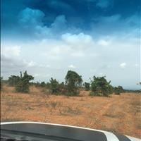 Bán nhanh lô đất diện tích 6000m2 có sổ hồng chính chủ tại xã hồng thái, công chứng ngay khi mua.