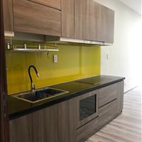 Bán gấp Officetel 35m2 có bếp, sàn gỗ, máy lạnh tại chung cư D-Vela quận 7 chỉ 1.23 tỷ bao hết