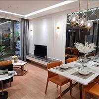 Cần bán gấp căn hoa hậu 3 phòng ngủ tại chung cư VCI, diện tích 75m2