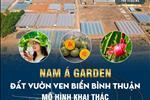 Dự án Nam Á Garden - ảnh tổng quan - 5