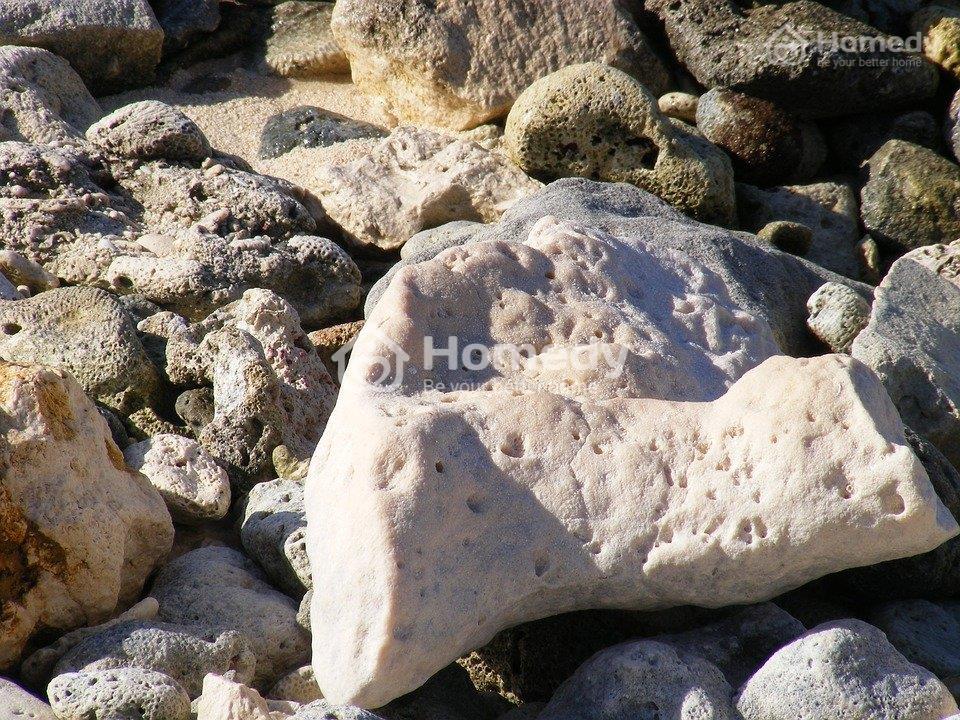 Đá san hô trắng hợp vói người mệnh Kim
